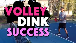 Volley Dink Success